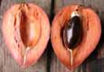 Mamey Sapote click to Enlarge